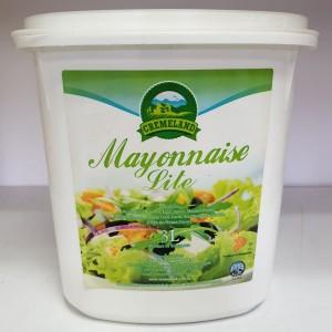 Mayonnaise Lite